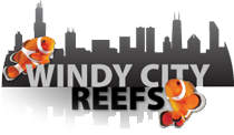 Windy City Reefs